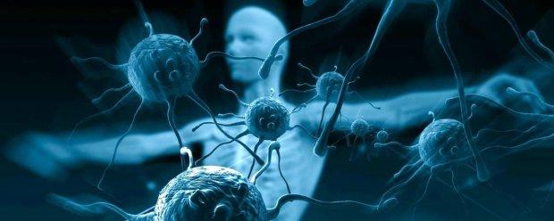 Рассадник бактерий и инфекций: назван самый опасный предмет в доме
