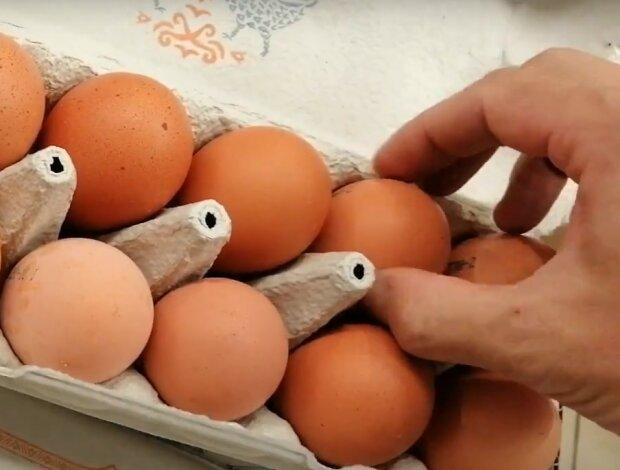Скрин, видео YouTube яйца