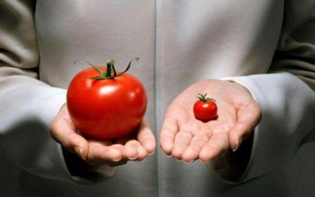 5 найвідоміших міфів про ГМО, у які не варто вірити