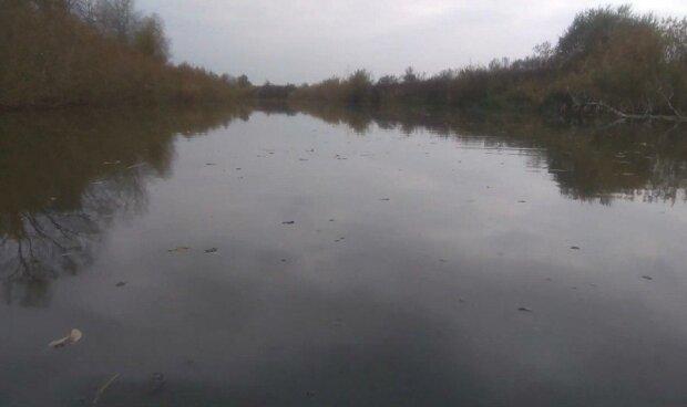Під Дніпром в річці потонув дев'ятирічний хлопчик - вмів плавати, але...