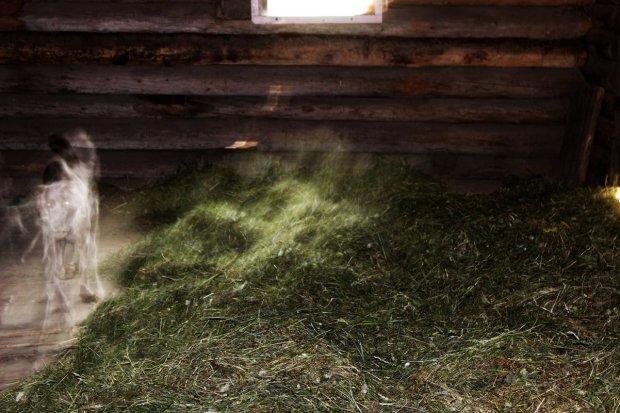 Призрак пса устроил в доме погром: камера засняла шаловливого мальчика
