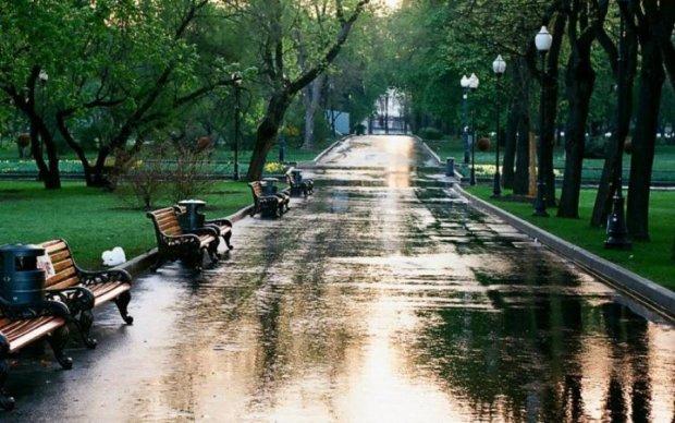 Погода в Житомире на 1 июля: стихия охладит украинцам пыл