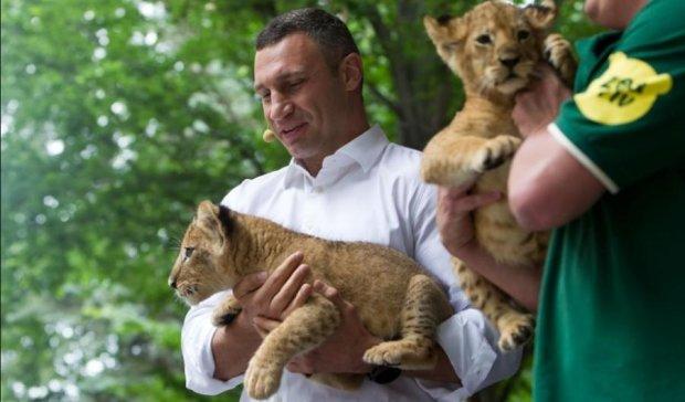 Кличко пообещал киевлянам европейский зоопарк