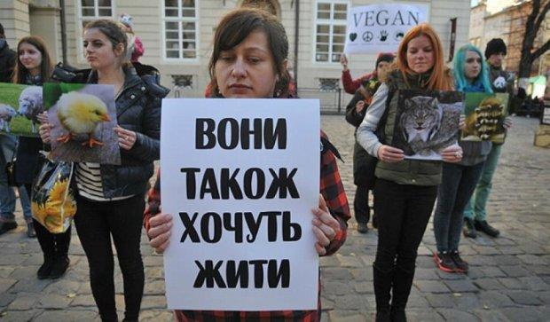 Львовские веганы устроили митинг против мясоедства (фото)