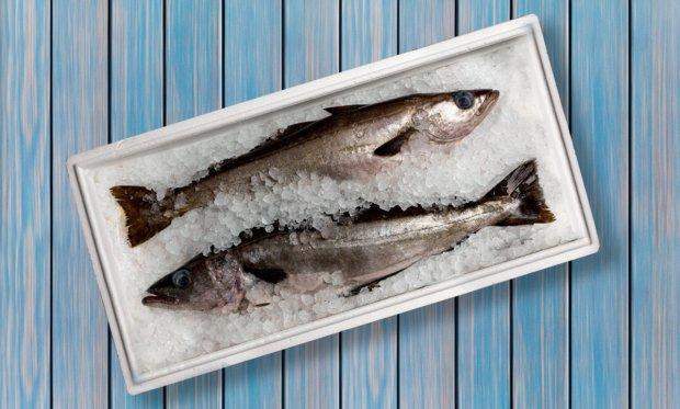 Українці їдять майже в два рази менше риби, ніж жителі ЄС