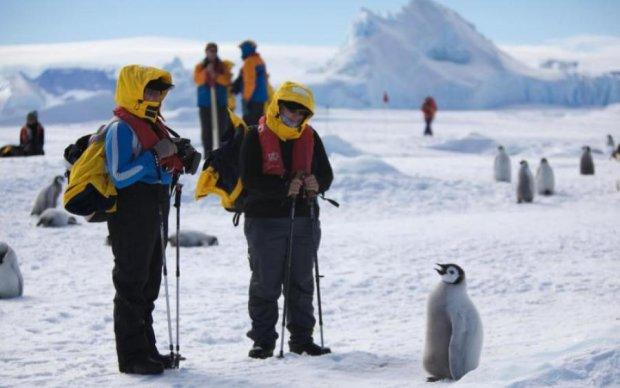 Вчені розкрили страшну долю Антарктиди
