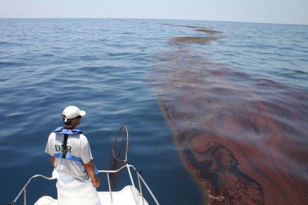 Море перетворилося на яму з отрутою: екологи попередили про найстрашніше, - так виглядає поріг Апокаліпсису