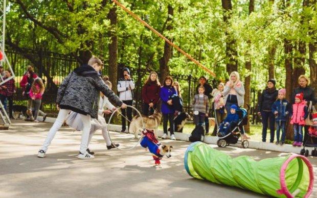 Безкоштовні заходи Києва: розклад на вересень
