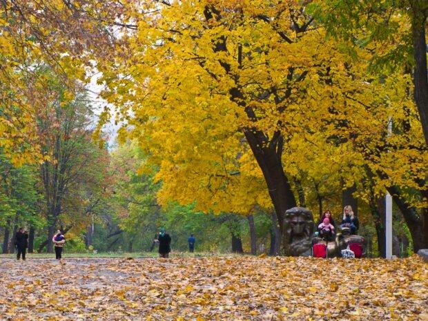 Днепр, парк, иллюстративное фото