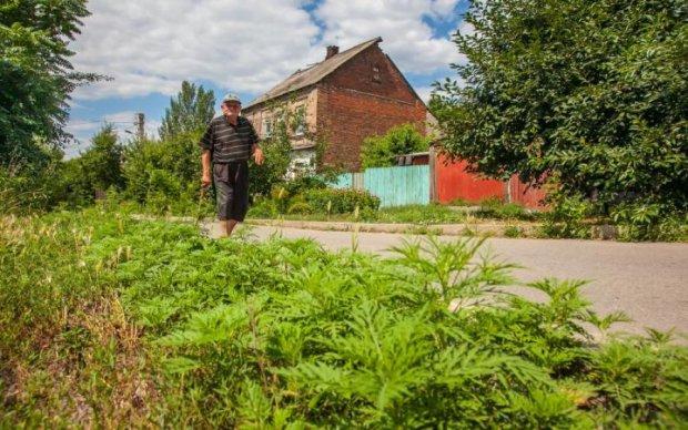 Українець вигадав найдієвіший спосіб боротьби з бур'янами