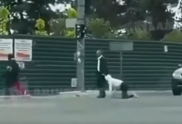 Людина на повідку, скрін з відео