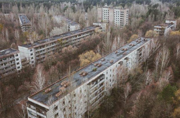 Чорнобиль окупували відомі коні-іммігранти