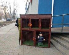 """Дитина у клітці, фото - """"Типовий Київ"""""""