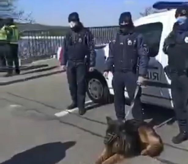 У Києві на Гідропарку розгорілися сутички, стіна копів проти спортсменів - жорстке відео