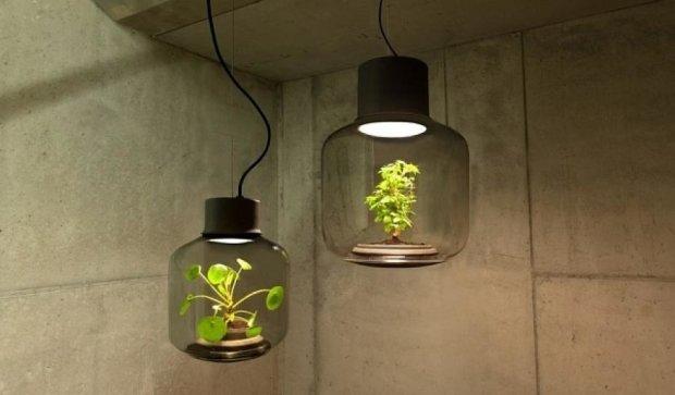 Светодиодная лампа позволяет выращивать растения без света и воды