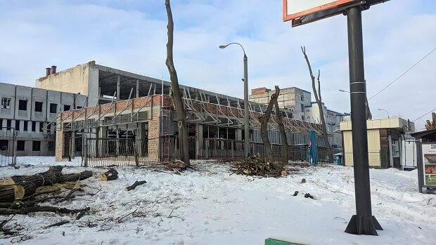 """Хмельничанам показали будівництво Mcdonald's, в мережі збісилися: """"Куди тополі рубаєте?"""""""