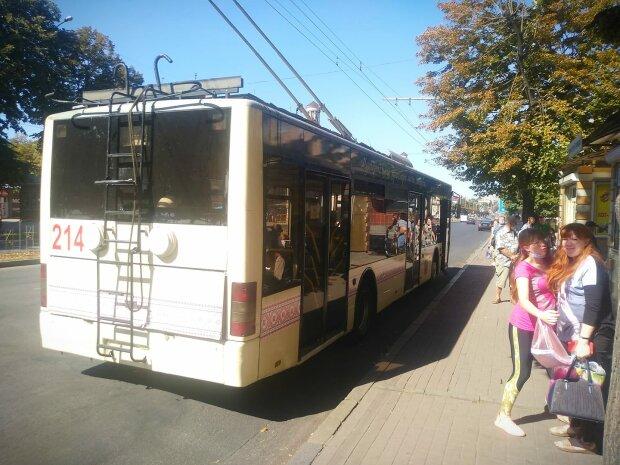 """У Запоріжжі водій тролейбуса влаштував бійку з пасажиром: """"Ти баран? Здачі немає!"""""""