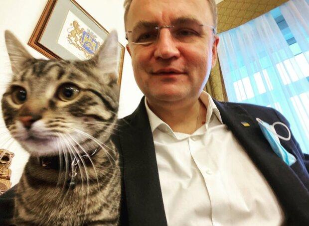 Скрин, Instagram кот Садового