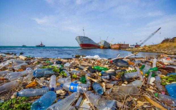 Неизвестные организмы пожирают мусор в океане