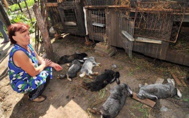 Неизвестное существо терроризирует жителей Прикарпатья