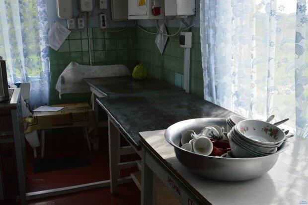 """Полчища тарганів і брудний посуд: вінничанам показали моторошне """"закулісся"""" кафе, де отруїлися діти"""