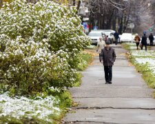 Погода в Виннице на 23 ноября, фото: Синоптик