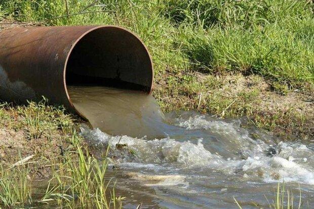 Датчики зашкаливают, экологи бьют тревогу: в реке под Винницей обнаружили опасную инфекцию