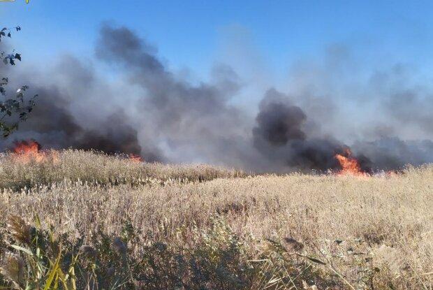 Масштабный пожар в Балаклее, фото: kh.dsns.gov.ua