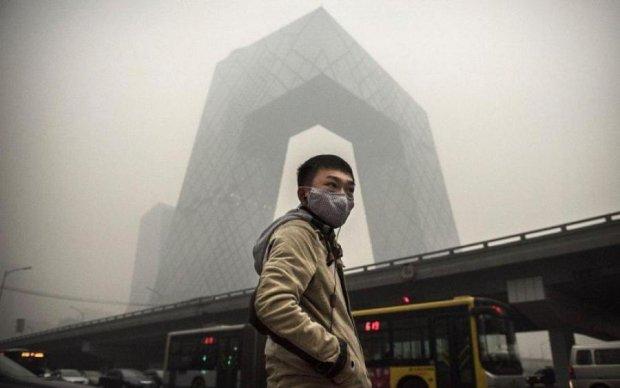 Экологи рассказали, как спасти мегаполисы от удушья