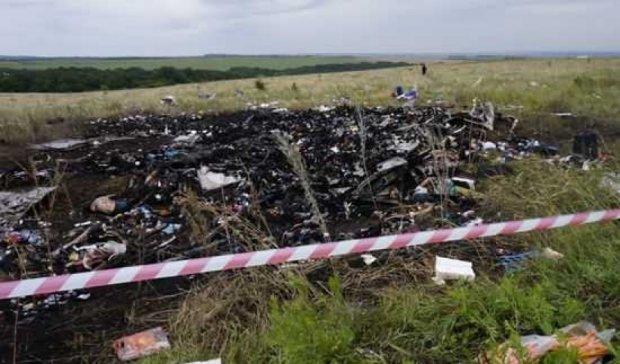 ЄСПЛ встановить вину Росії в катастрофі МН17