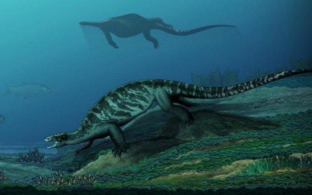 Древняя черепаха с клювом раскрыла секрет эволюции