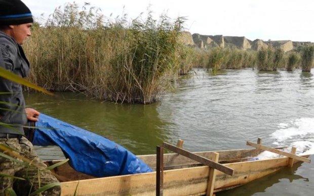 Мохнате чудовисько з клешнями оселилося в одеських озерах