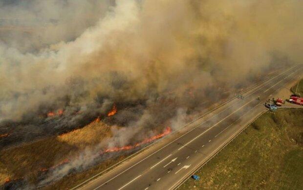 Пожар в Украине, скриншот видео