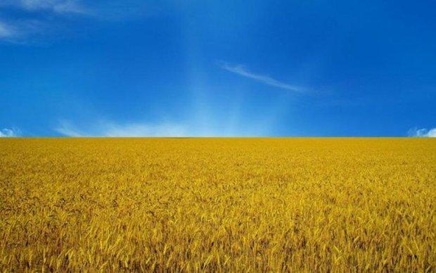 До чого б ви привели Україну?