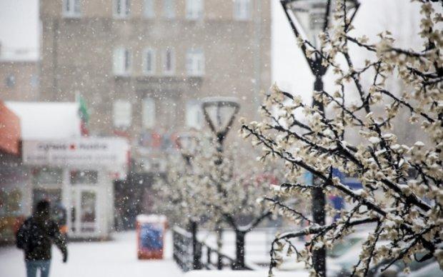 Завалений снігом Крим шокував мережу