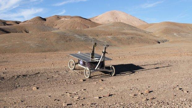 Марсохід знайшов невідомі живі організми у найнесподіванішому місці