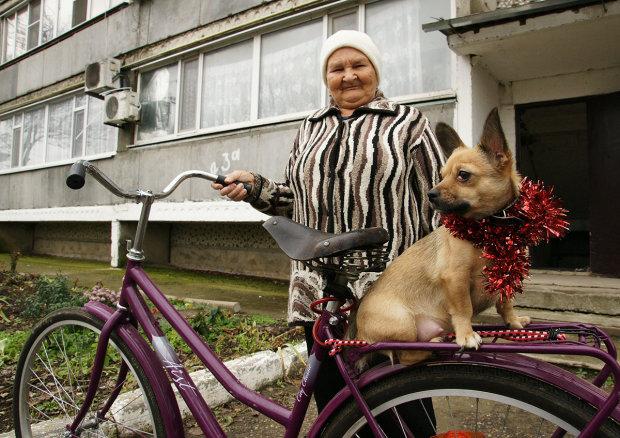 Велосипедист і пес підтвердили приказку про найкращого друга людини: кумедне відео