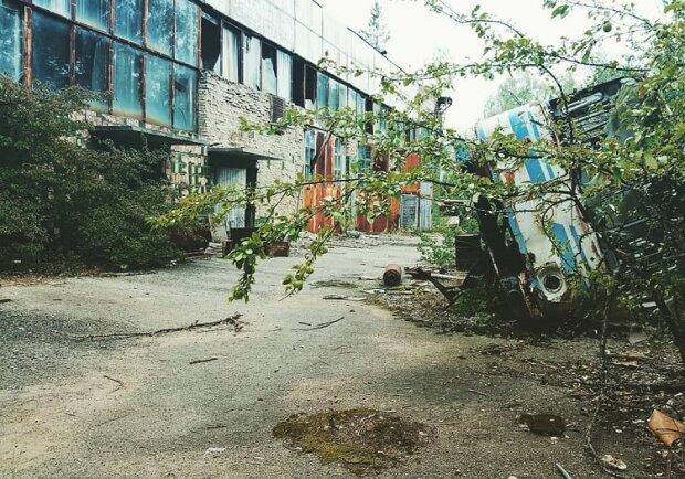 Чернобыль поглощает невидимый убийца, и это не радиация - как выглядит зона после десятилетий отчуждения