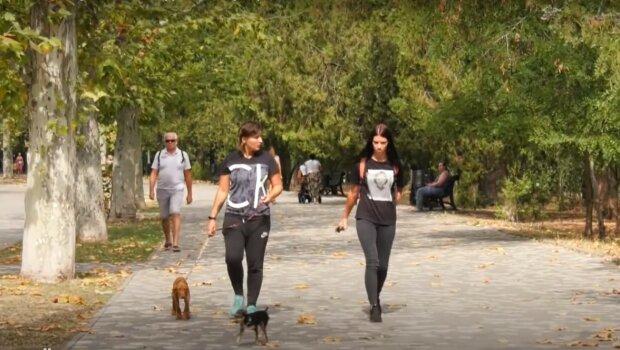 прогулянка з вихованцями, скріншот з відео