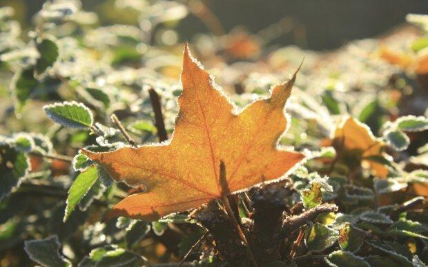 Погода на 30 жовтня: нічні заморозки нікого не помилують, але терпіти залишилося недовго