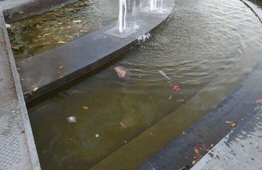 У Львові новенький фонтан перетворили на смердючу калюжу - гори сміття та плаваючі пляшки