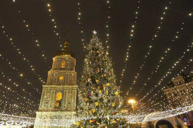 Вандалы побили игрушки и спилили верхушку елки: Новый год отменяется