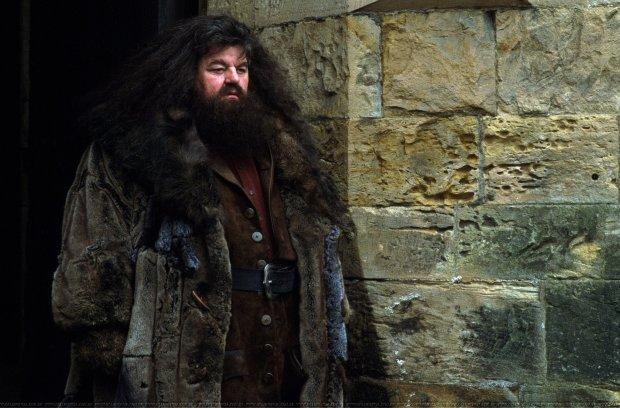 Проклятье Гарри Поттера настигло Хагрида: актер оказался прикованным к инвалидной коляске