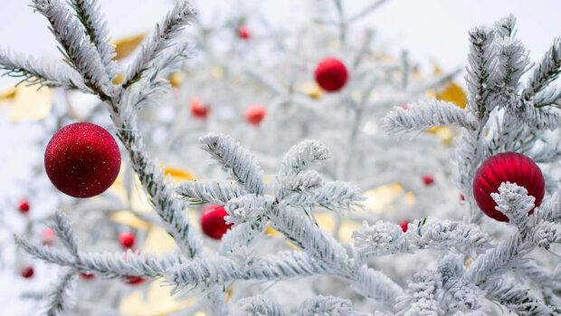 Готовьте санки: стихия укроет Киев снежным одеялом 29 декабря