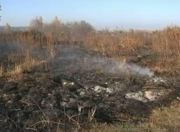Под Киевом пылают 17 гектаров торфяников