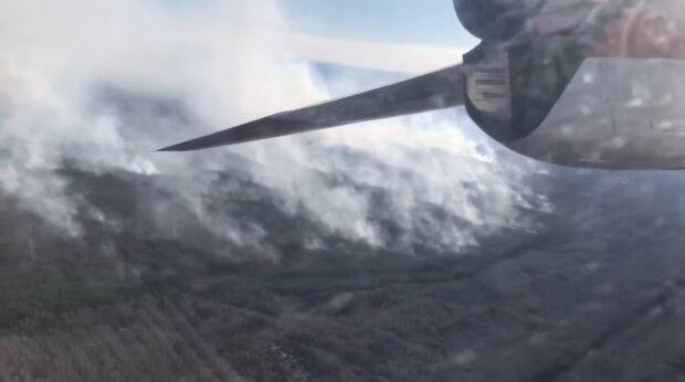 Пожежа у Чорнобилі, скріншот: ДСНС