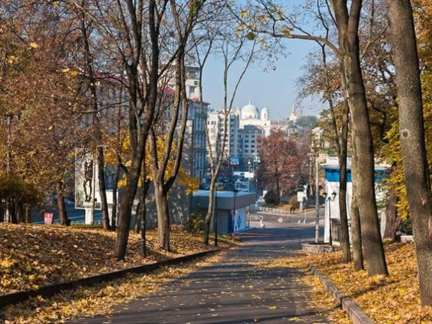 Осінь вирішила не затримуватися в Києві: яку погоду синоптики обіцяють 30 листопада