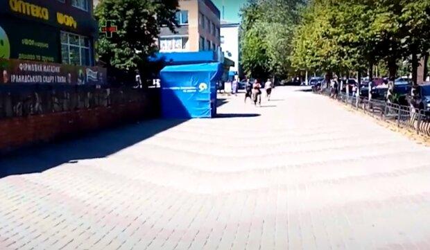 """У Тернополі дерево """"проголосувало"""" проти слуг народу, і з цим не посперечаєшся"""