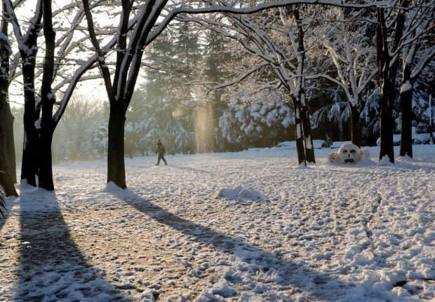 Погода на 17 февраля: весна пришла в Украину, но ненадолго