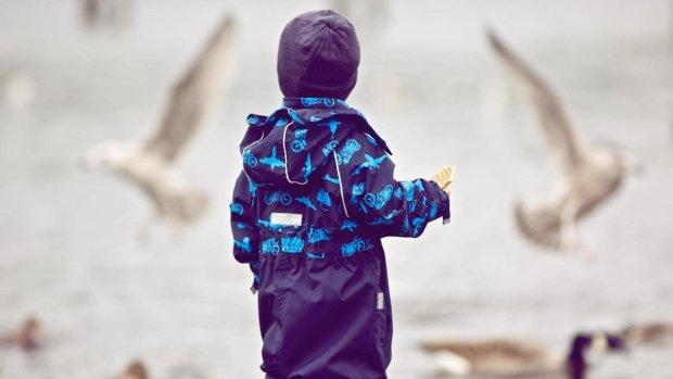7-летний мальчик лишился части мозга, он не только выжил, но и развивается согласно возрасту: ученые объяснили, как такое возможно